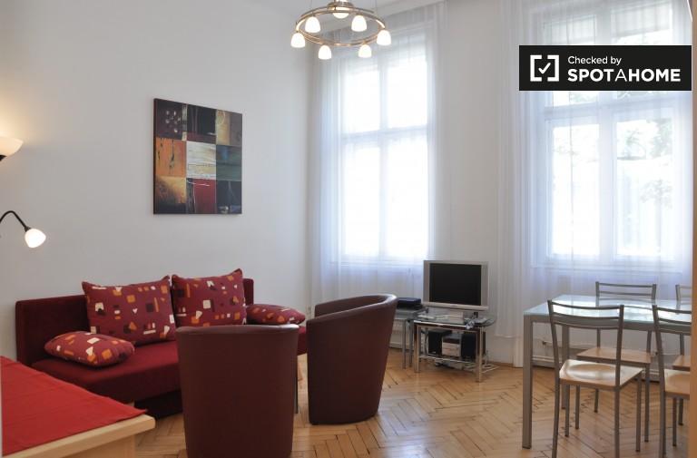 Spacious studio apartment for rent in Alsergrund, Vienna