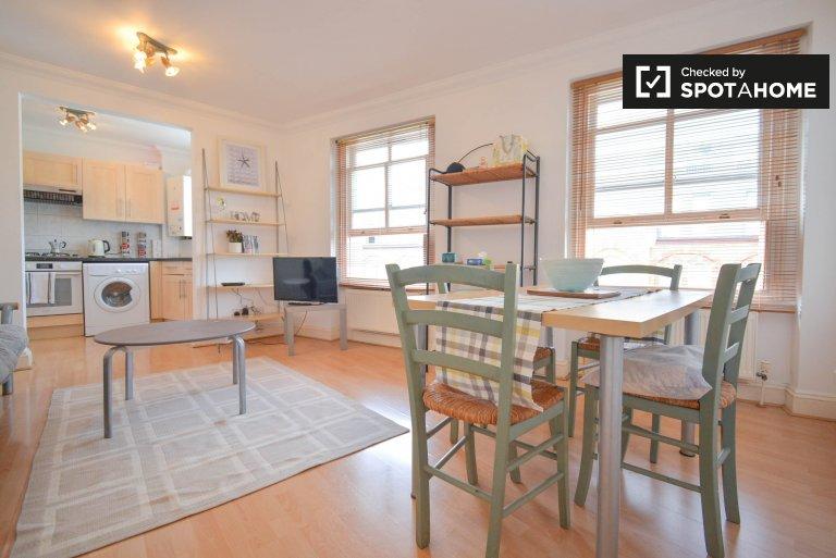 Nowoczesne 1-pokojowe mieszkanie do wynajęcia w City of Westminster w Londynie