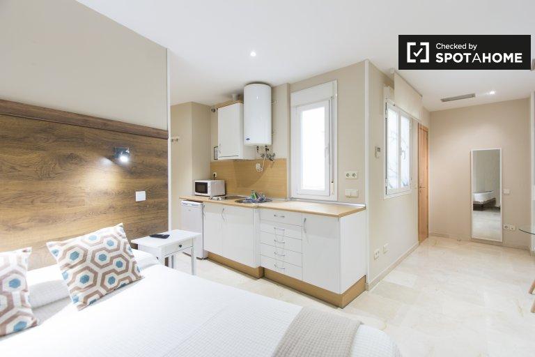 Terrific studio apartment for rent in Centro, Madrid