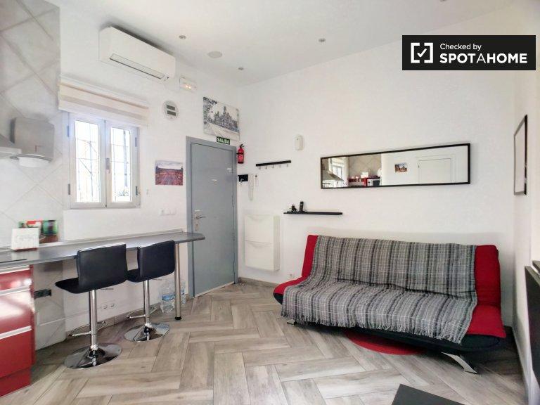 Furnished 2-bedroom apartment for rent in Lavapiés, Madrid
