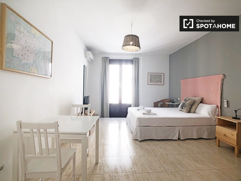 Elegant studio for rent in Centro, Madrid