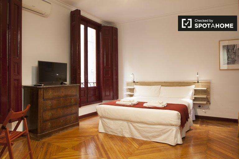 Accogliente monolocale in affitto nel centro di Madrid