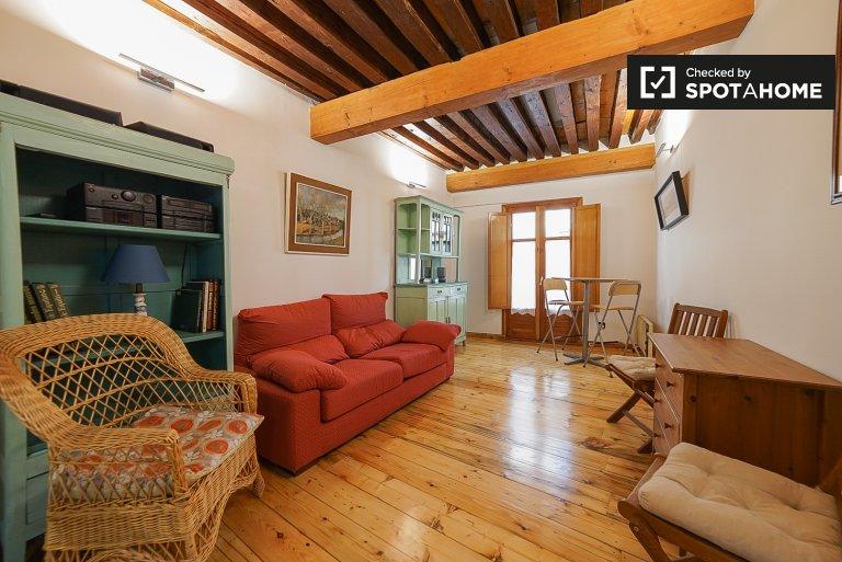 Large studio apartment for rent in Centro, Madrid