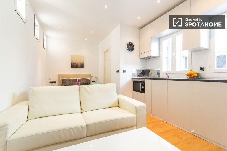 Modern Studio with Equipped Kitchen in Madrid City Center