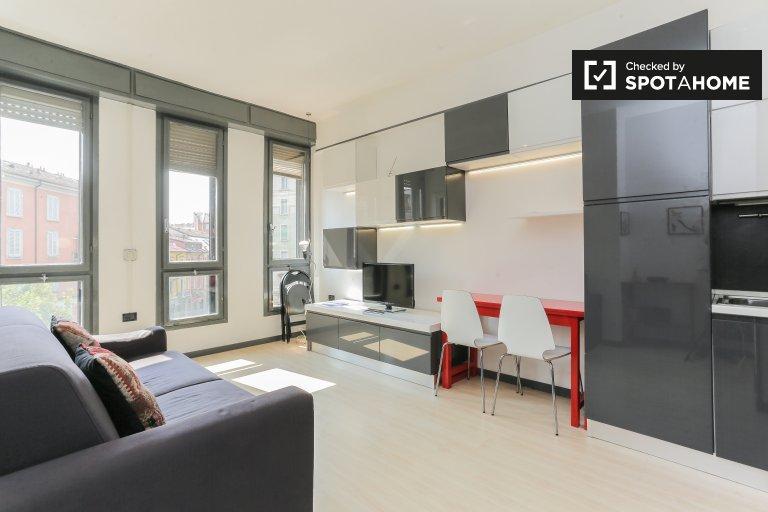 Luminoso monolocale in affitto a Lodi, Milano