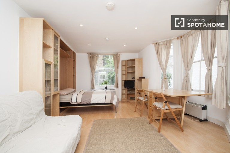 Stylish Studio Apartment with Dryer in Westminster, London