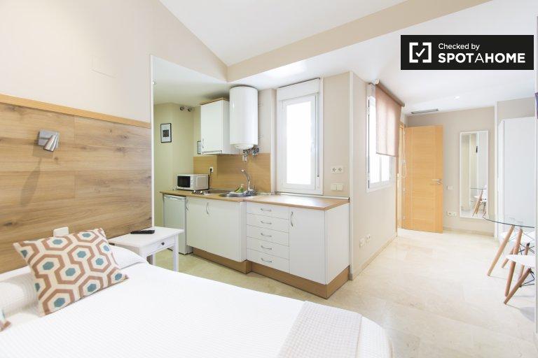 Sunny studio apartment for rent in Centro, Madrid
