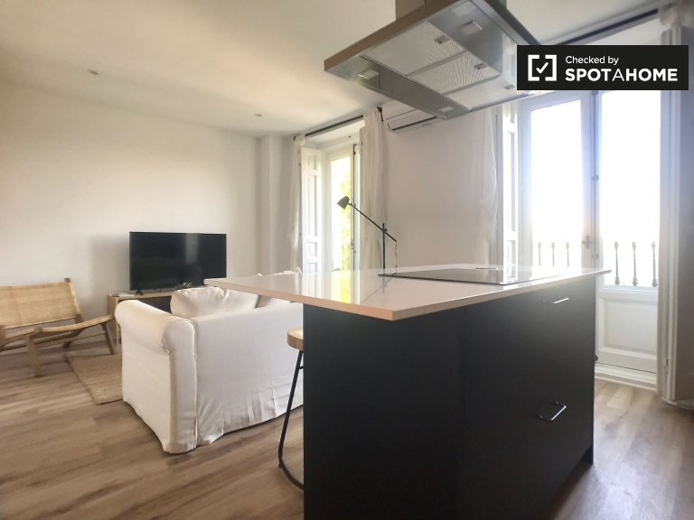 Luxurious 2-bedroom apartment for rent in Atocha, Madrid