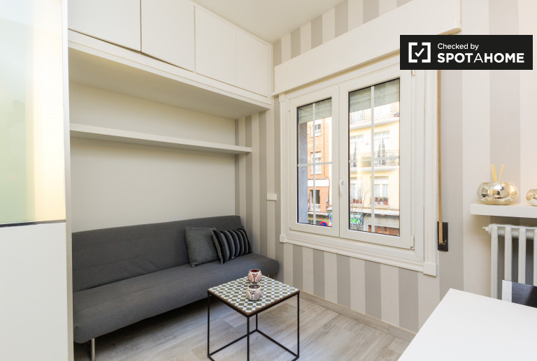 Modern Studio Apartment For Rent In Castellana