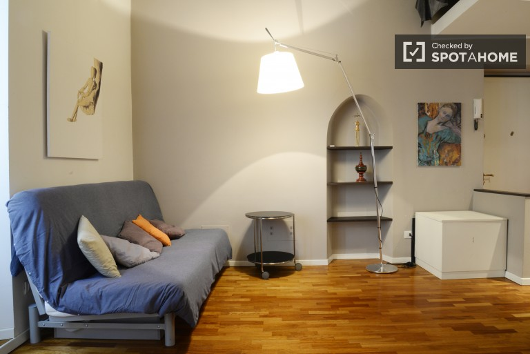 Modern studio in Milan district Porta Romana