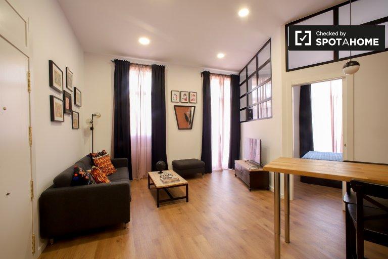 Appartement 1 chambre ouverte à louer à Extramurs, Valence