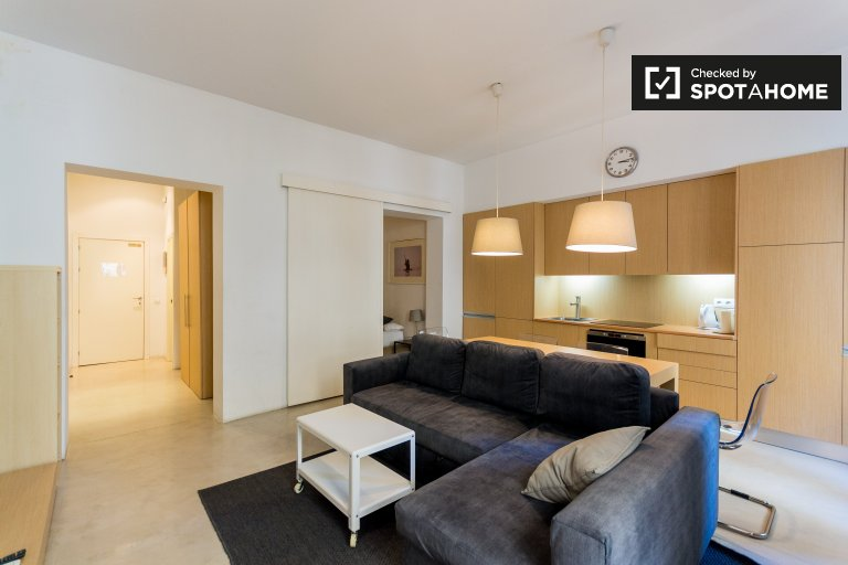 Sleek studio apartment for rent in Chueca, Madrid