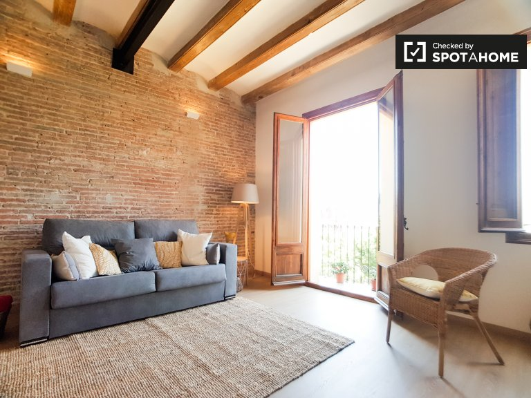 Modern 1-bedroom apartment for rent in Sants, Barcelona
