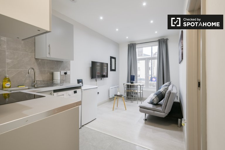 Modern 1-bedroom flat to rent, City of Westminster, London