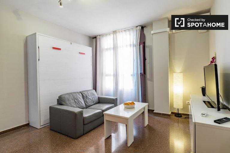 Estudio en alquiler en Burjassot, Valencia.