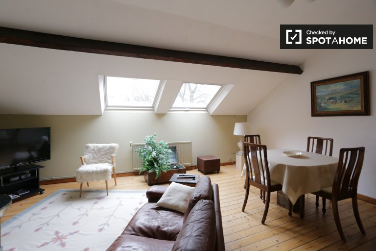 Cozy 1-bedroom apartment for rent in Ixelles, Brussles