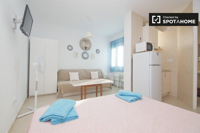 Furnished studio apartment for rent in Lavapiés, Madrid