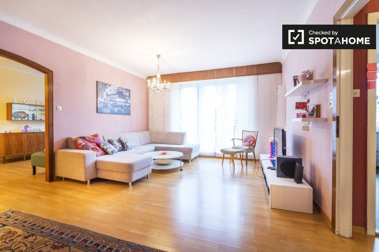 Spacious 1-bedroom apartment for rent in Innere Stadt