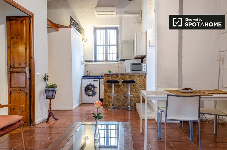 1-bedroom apartment for rent in Ciutat Vella, Valencia