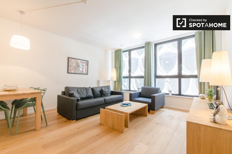 Helle 1-Zimmer-Wohnung zu vermieten Brüssel Stadtzentrum