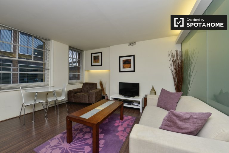 Spacious 1-bedroom apartment to rent in Islington