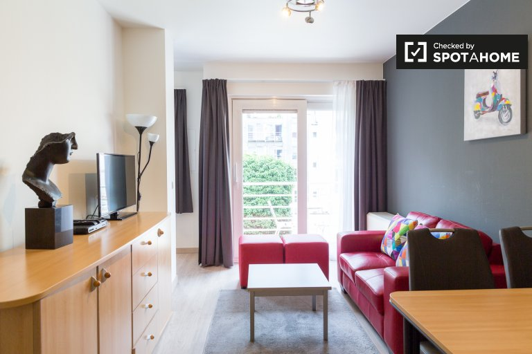Beautiful 1-bedroom apartment for rent in Brussels