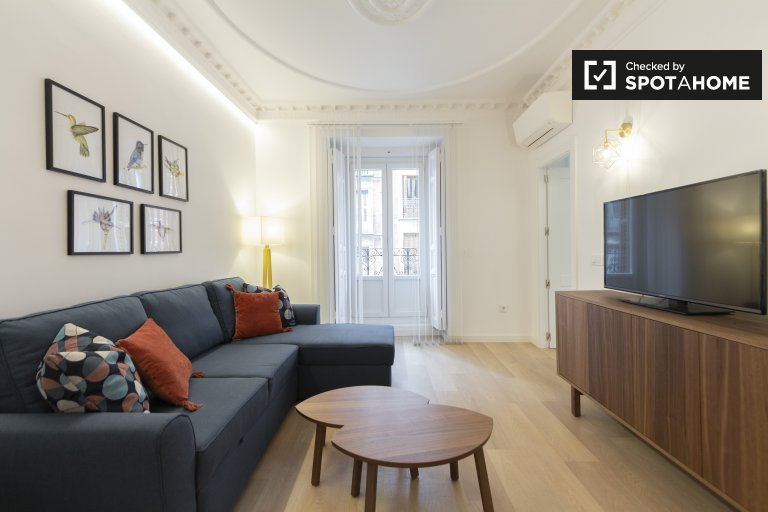 Amazing 1-bedroom apartment for rent in Centro, Madrid