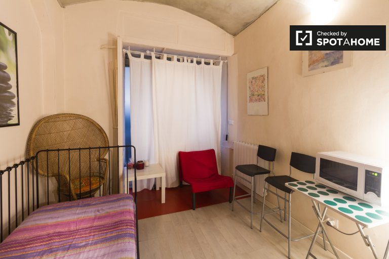 Furnished studio apartment for rent in Centro, Turin