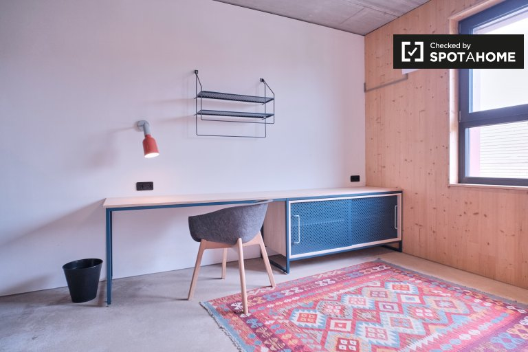 Coliving studio apartment in Potsdam, Berlin
