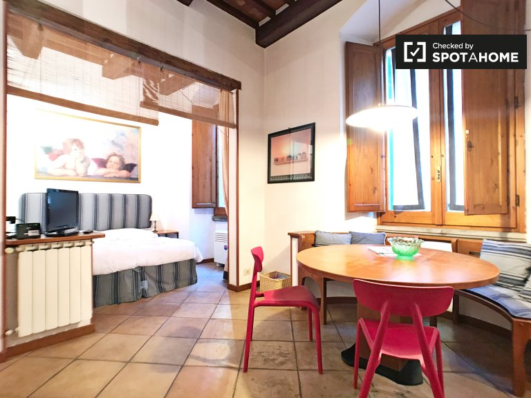 Furnished studio apartment with AC for rent in Piazza Signoria
