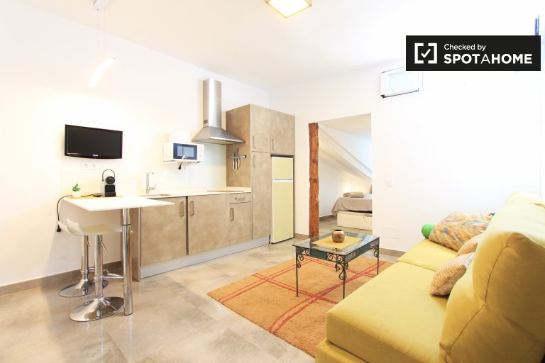 1-bedroom apartment for rent in Malasaña, Madrid