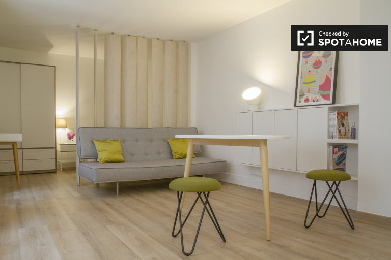 Gorgeous studio apartment for rent in the 7th arrondissement