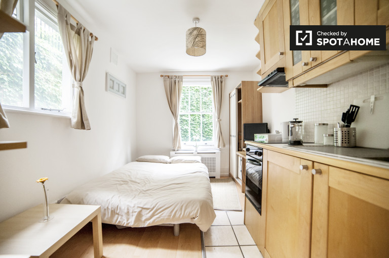 Cozy studio apartment for rent in Pimlico, Travelcard Zone 1