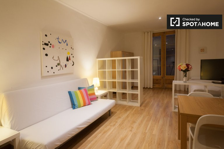 Spacious 2-bedroom apartment for rent in Barri Gòtic