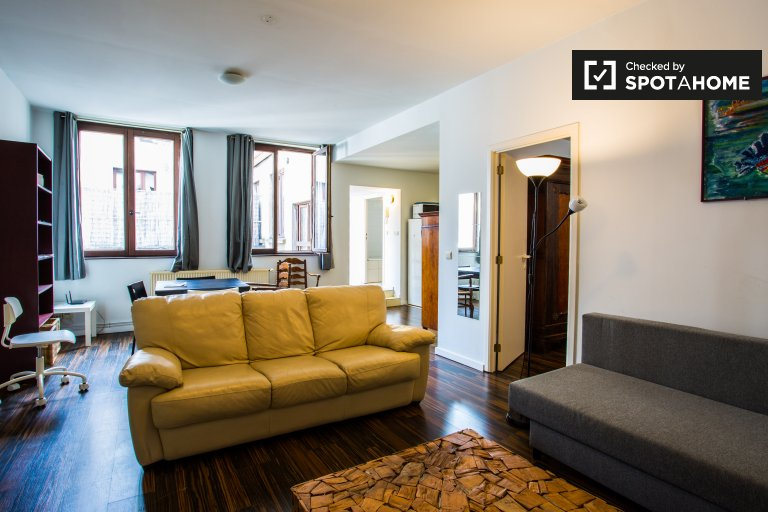 Cozy 1-bedroom apartment near museums for rent in the city center