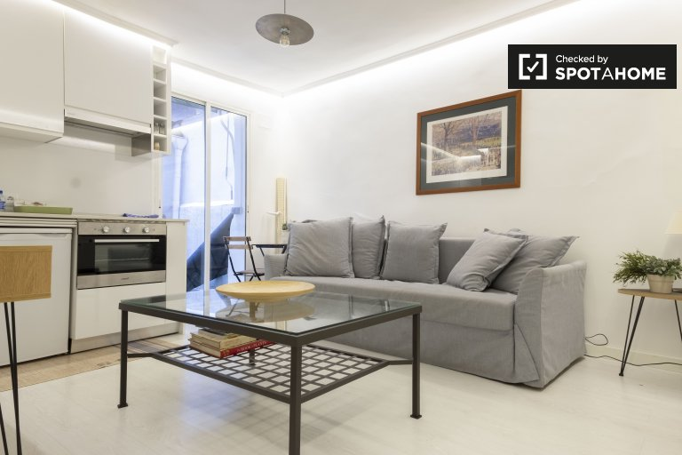 Studio apartment for rent in Malasaña, Madrid