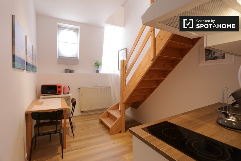 Minimalist studio apartment for rent in Center, Brussels