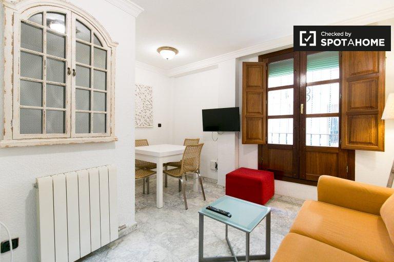 Charming 2-bedroom apartment for rent in Centro, Granada