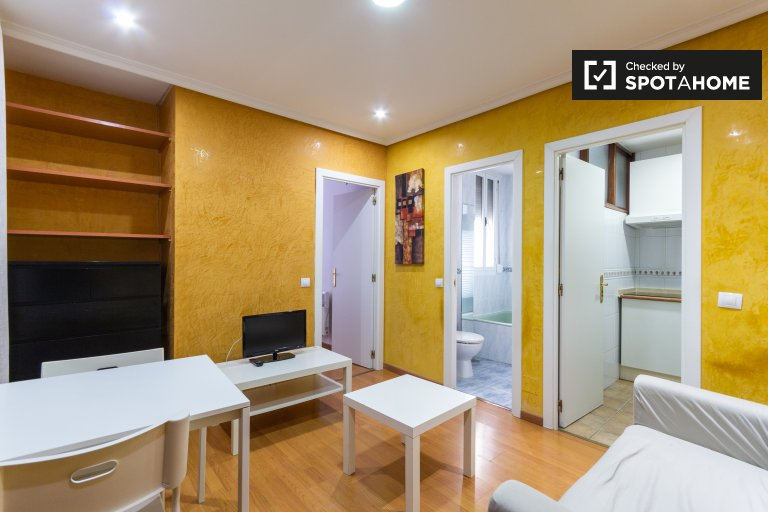 1-bedroom apartment for rent in Salamanca, Madrid