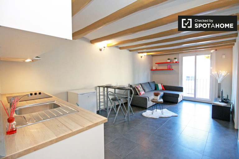 1-bedroom apartment with AC for rent in El Raval, Barcelona