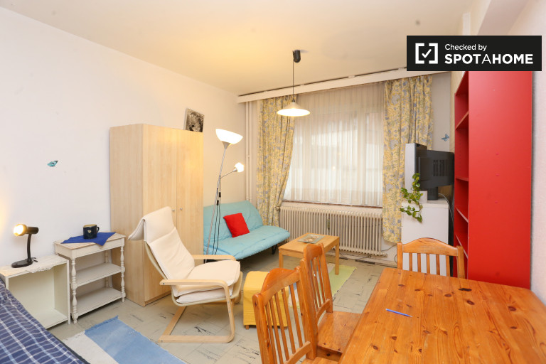 Cosy studio apartment for rent in Schaerbeek