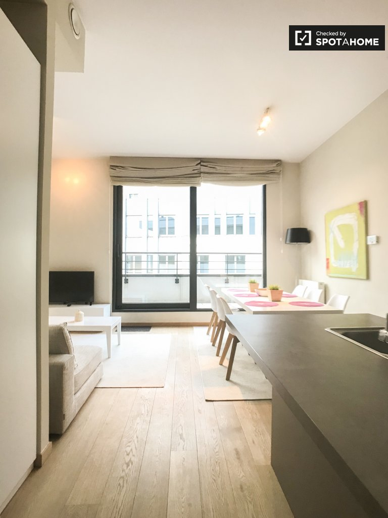Modern 2-bedroom apartment for rent in Saint Josse, Brussels