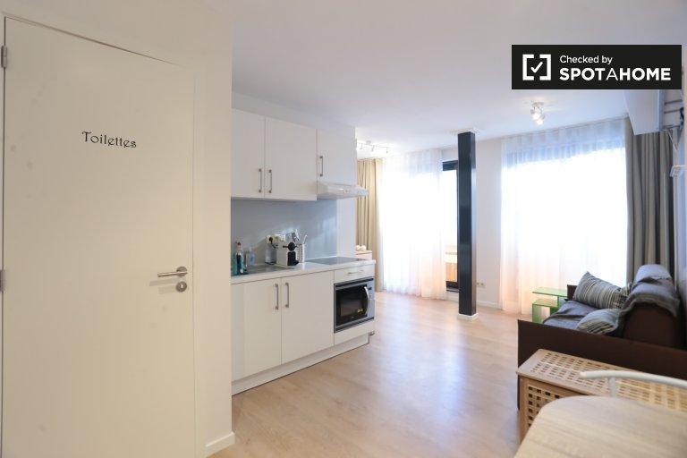 Przytulny apartament typu studio do wynajęcia w Saint Josse, Bruksela