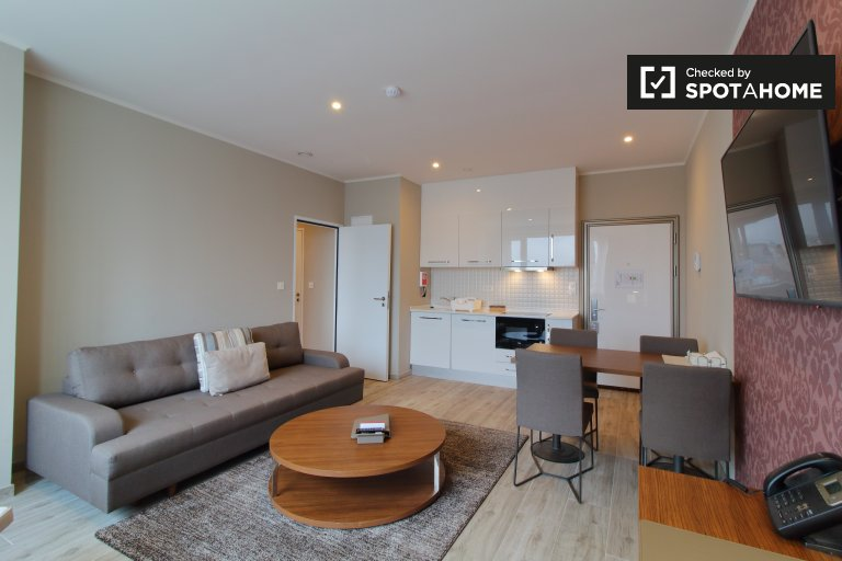 Mieszkanie z 1 sypialnią do wynajęcia w centrum Brukseli