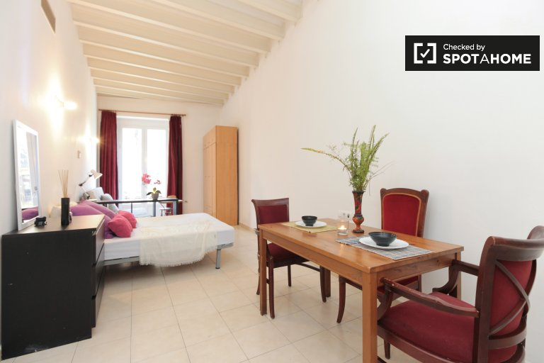 Studio apartment for rent in Ciutat Vella, Barcelona