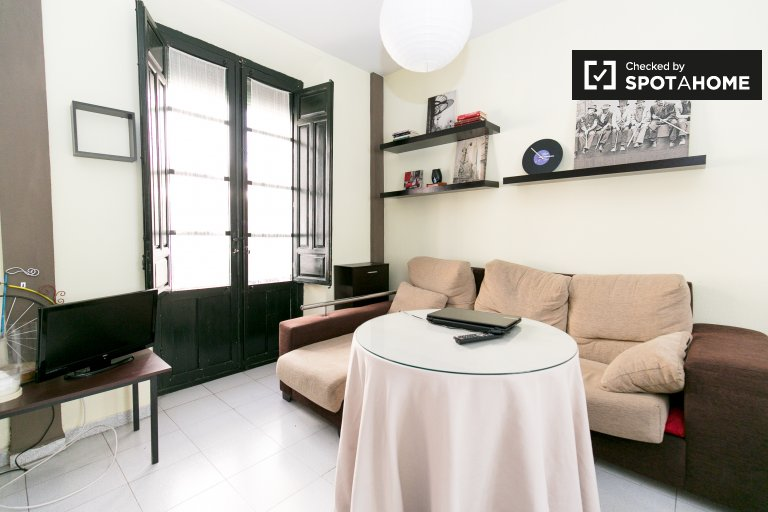 Furnished 2-bedroom apartment with balconies for rent in San Juan de Dios