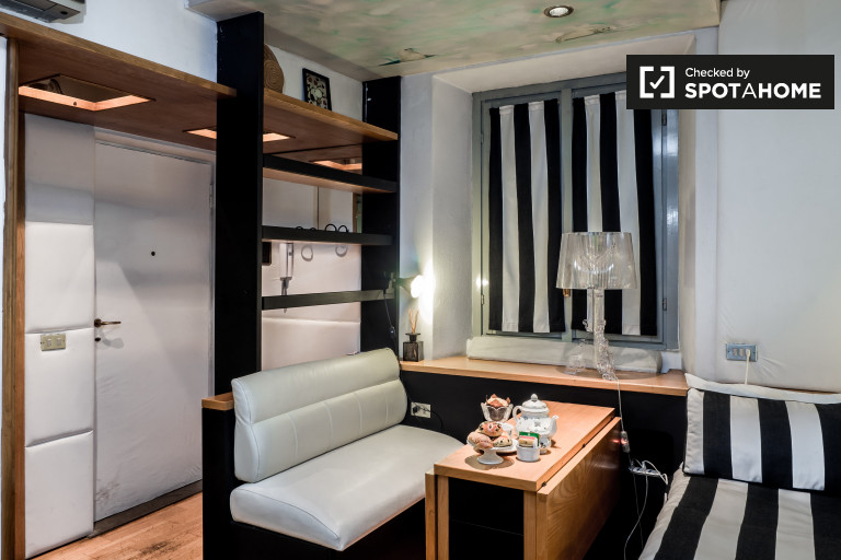 Fantastic studio apartment for rent in Brera, Milan