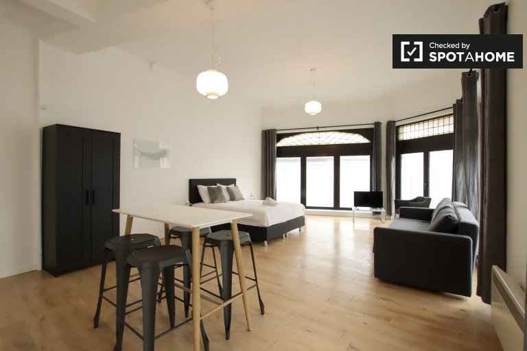 Spacious studio apartment for rent in Brussels City Center
