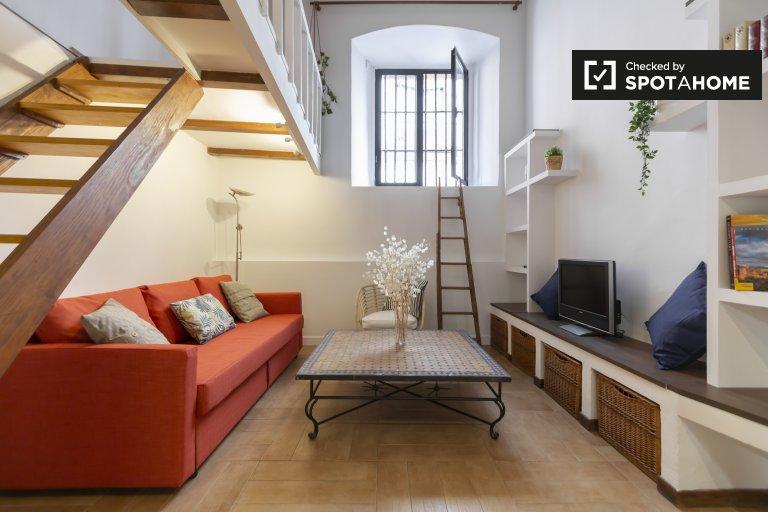 Historisches Studio-Apartment zu vermieten in La Latina, Madrid