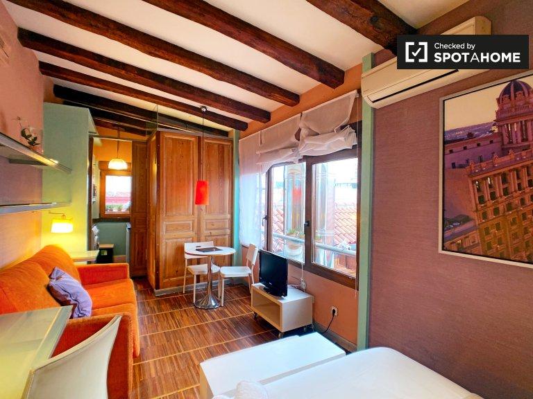 Studio à louer à Centro, Madrid
